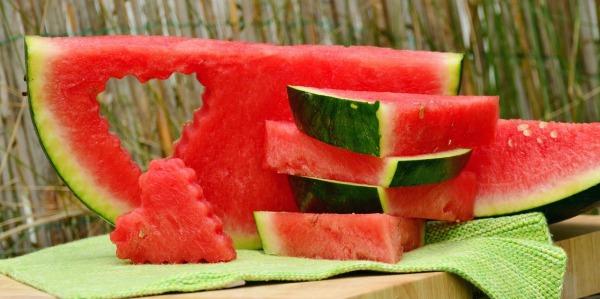 melon-1537284_1280 (1)